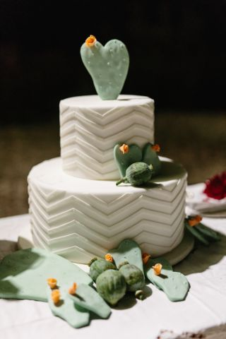 wedding cake with succulent plants