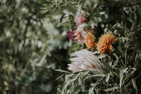 wedding decor with strange flowers, protea